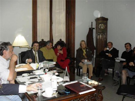 Legisladores coincidieron en analizar en mayor profundidad el proyecto de ley previsional