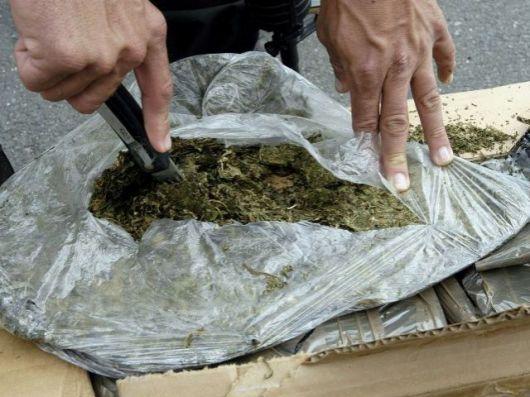 Decomisaron marihuana valuada en $ 2.200.000