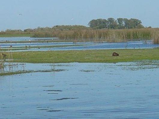 Refuerzan monitoreo sobre acuíferos que atraviesan Corrientes
