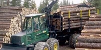 806 pymes forestoindustriales generan más de 9.300 empleos directos