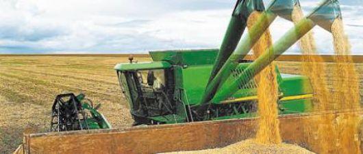 """El campo """"en negro"""": se evadieron $615 millones de impuestos por granos"""