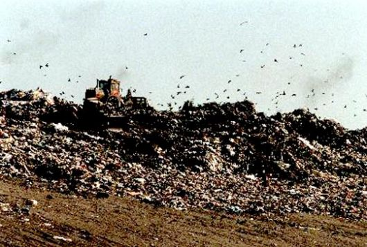 La Justicia prohibió al Municipio del Paso arrojar basura a cielo abierto