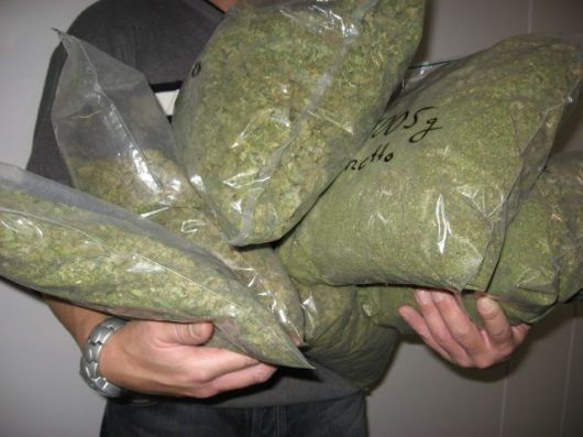 Incautan 205 kilos de marihuana