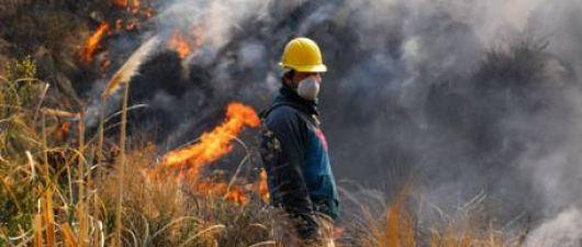 El incendio forestal arrasó 40 mil hectáreas