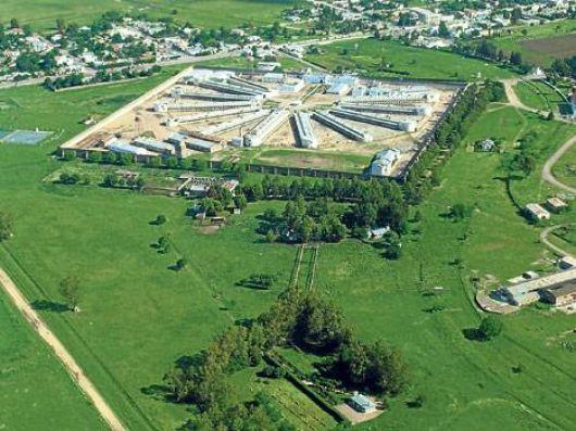 Sospechosa muerte de cinco presos que recibieron a Mariotto y el CELS