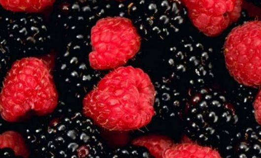 Super moléculas: los antioxidantes que retrasan el envejecimiento y curan