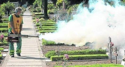 Detectan dos casos probables de chikungunya