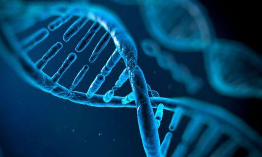 Test de ADN para diagnosticar cáncer de colon