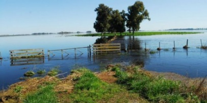 <p>Evaluar&aacute;n informes y aconsejar&aacute;n que se declare la emergencia agropecuaria</p>