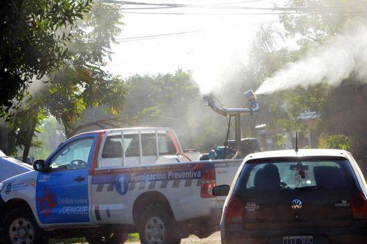 <p>Confirman 31 casos de dengue en Corrientes</p>