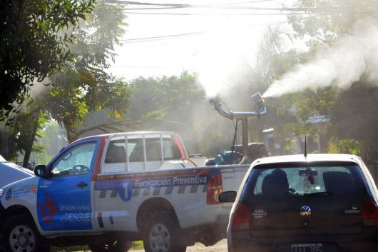 <p>Confirman 31 casos de dengue en Corrientes</p>