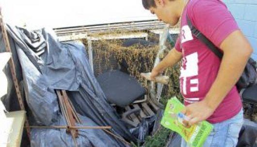 <p>Dengue: a fin de mes podr&iacute;a haber m&aacute;s afectados que en el brote del 2009</p>