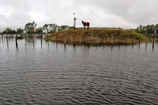 <p>Inundaciones: La preocupaci&oacute;n aparece cuando peligra la $oja</p>