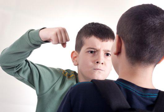 <p>Los genes, &iquest;los responsables de la violencia?</p>