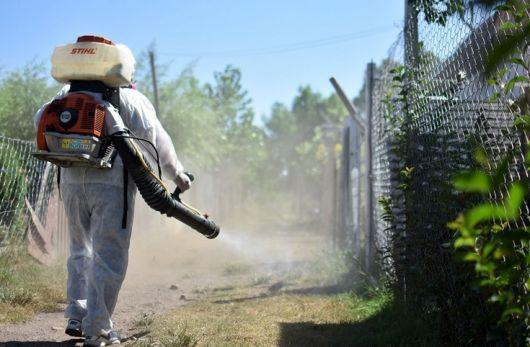 <p>Seis nuevos casos de Dengue en Corrientes</p>