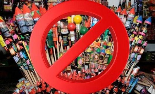 <p>Monte Caseros también se declaró libre de pirotecnia</p>