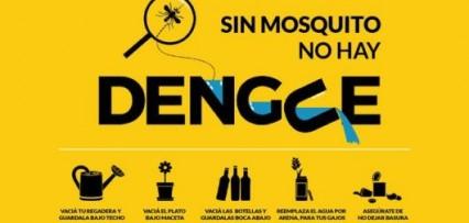 """<p>El """"dengue, la epidemia silenciosa que convive con COVID-19</p>"""