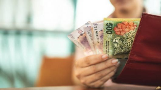 Ahorro: cuánta plata tendrías si hubieses invertido $10.000 a inicios de año en dólar, plazo fijo o acciones