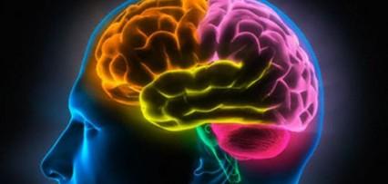 <p>Descubren un nuevo efecto de la música de Mozart en el cerebro</p>